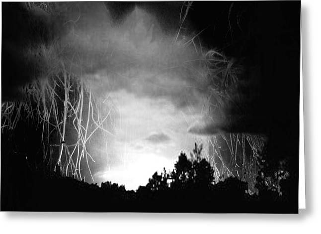 Coming Out Of The Darkness Greeting Card by Eleigh Koonce