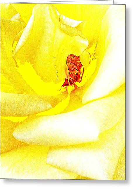 Bright Sculptures Greeting Cards - Coming Out Greeting Card by Paul Washington