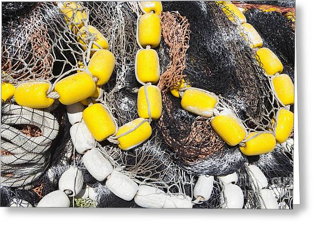 Netting Greeting Cards - Commercial Fishing Nets Greeting Card by Paul Edmondson
