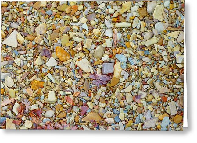 Nature Collage Greeting Cards - Community of Color Greeting Card by Tim Mattox