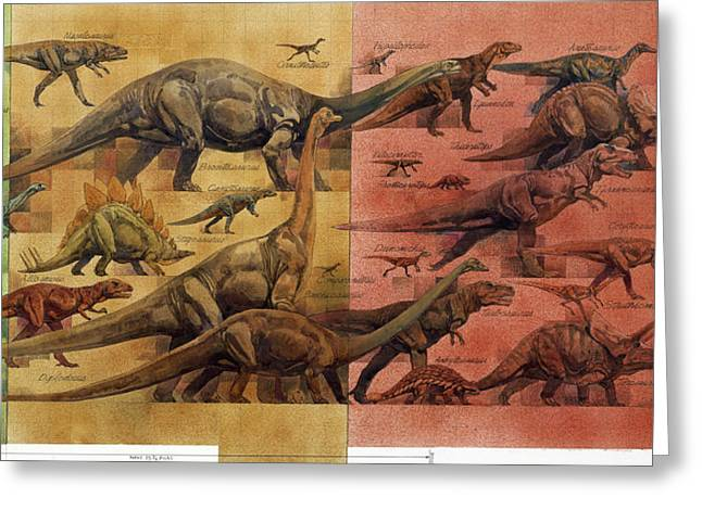 Triassic Greeting Cards - Comparison Of Dinosaurs Of Triassic Greeting Card by Roy Andersen