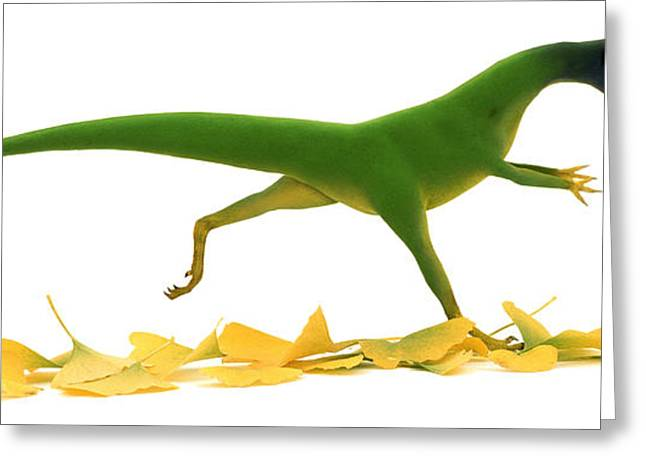 White Drawings Greeting Cards - Compsognathus Greeting Card by Jane Burton and Warren Photographic and Photo Researchers