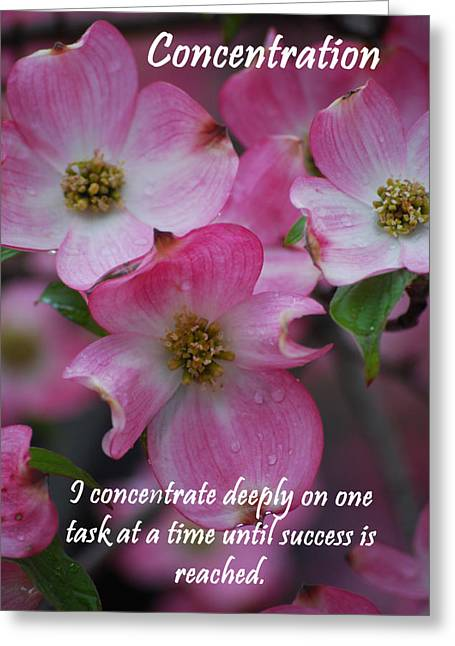 Affirmation Greeting Cards - Concentration Greeting Card by Michelle  BarlondSmith
