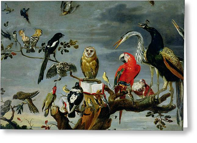 Parrots Greeting Cards - Concert of Birds Greeting Card by Frans Snijders