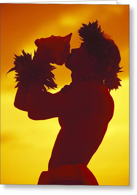 Shirtless Greeting Cards - Conch Shell Blower Greeting Card by Ron Dahlquist - Printscapes