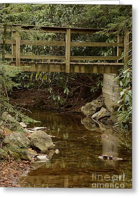 Randolph County Wv Greeting Cards - Condon Run Greeting Card by Randy Bodkins