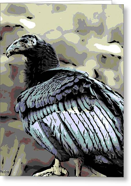 Condor Profile Greeting Card by George Pedro