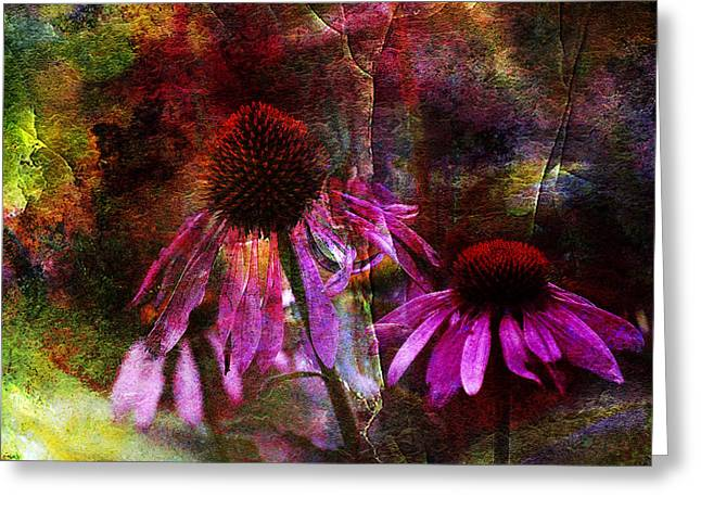 J Larry Walker Greeting Cards - Cone Flower Beauties Greeting Card by J Larry Walker