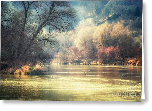 Haze Greeting Cards - Confluence Greeting Card by Alexander Kunz