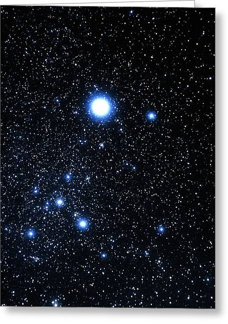 Sirius Greeting Cards - Constellation Canis Major With Halo Effect Greeting Card by John Sanford