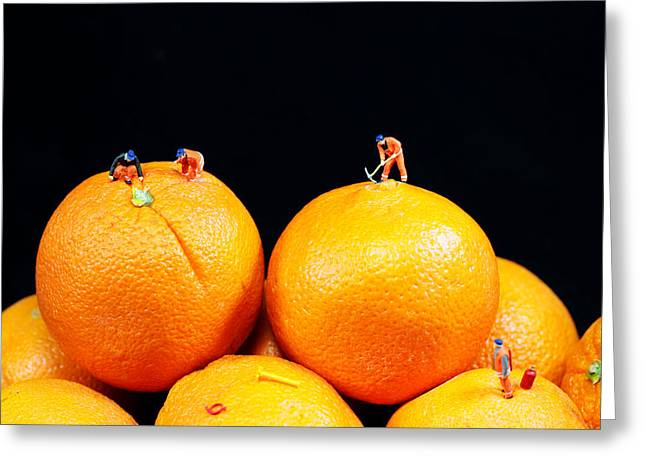 Creative People Digital Art Greeting Cards - Construction on oranges Greeting Card by Paul Ge