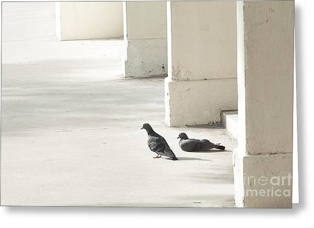 Two Birds Greeting Cards - Contemplation Greeting Card by Ivy Ho