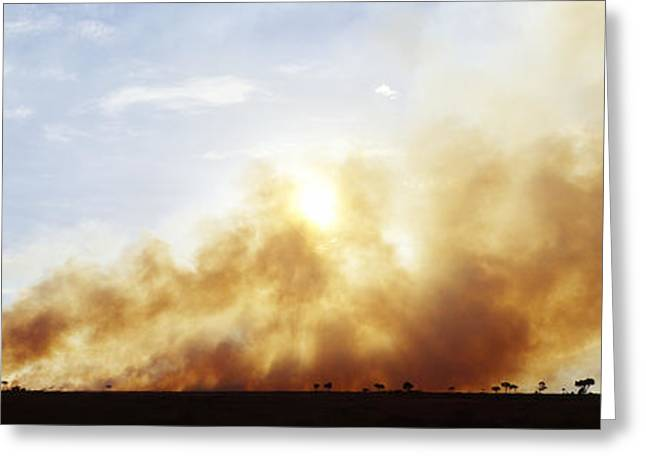 Controlled Burn Masai Mara Game Reserve Greeting Card by Jeremy Woodhouse