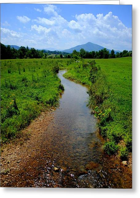 Babbling Greeting Cards - Cool Mountain Stream Greeting Card by Frozen in Time Fine Art Photography