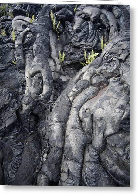 Geomorphology Greeting Cards - Cooled Pahoehoe Lava Greeting Card by Tony Craddock