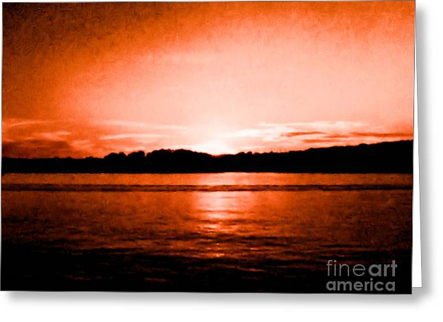 Tree Reflection At Sunset Greeting Cards - Copper Sunset Greeting Card by Marsha Heiken