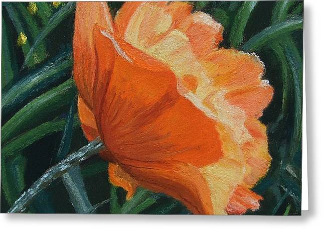 Flower. Petals Pastels Greeting Cards - Coquelicot Greeting Card by Marie-Claire Dole
