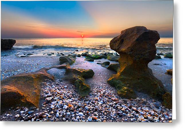 North Sea Greeting Cards - Coral Dawn Greeting Card by Debra and Dave Vanderlaan