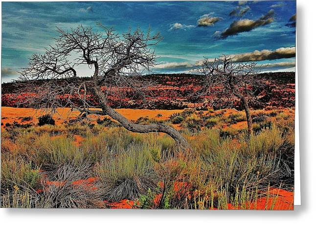 Coral Dunes Greeting Card by Benjamin Yeager