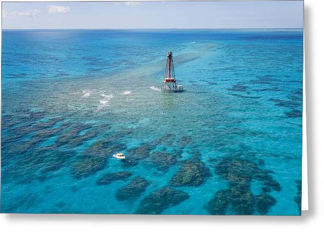 Signaling Greeting Cards - Coral Reefs Seen During Spring Low Greeting Card by Mike Theiss
