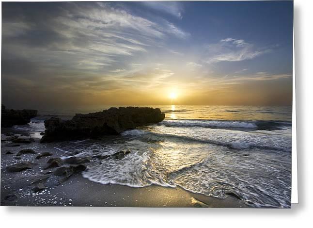 Coral Shoreline Greeting Card by Debra and Dave Vanderlaan