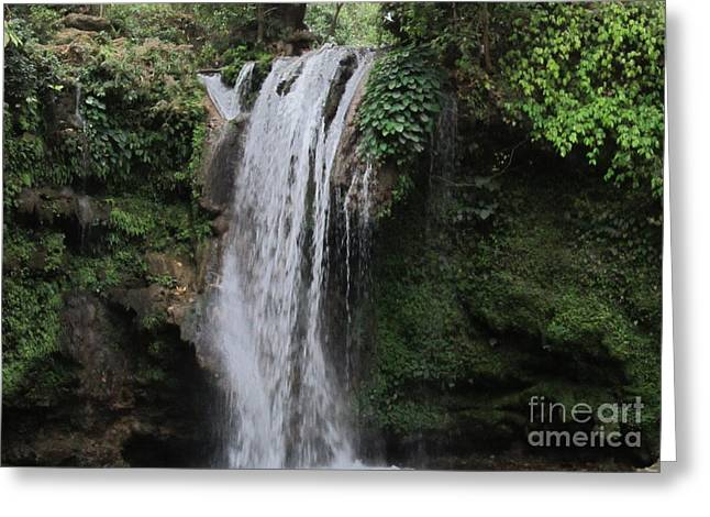 Ilendra Vyas Greeting Cards - Corbett Fall Greeting Card by ilendra Vyas