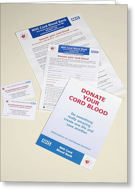 Umbilical Cord Greeting Cards - Cord Blood Donation Information Greeting Card by Tek Image
