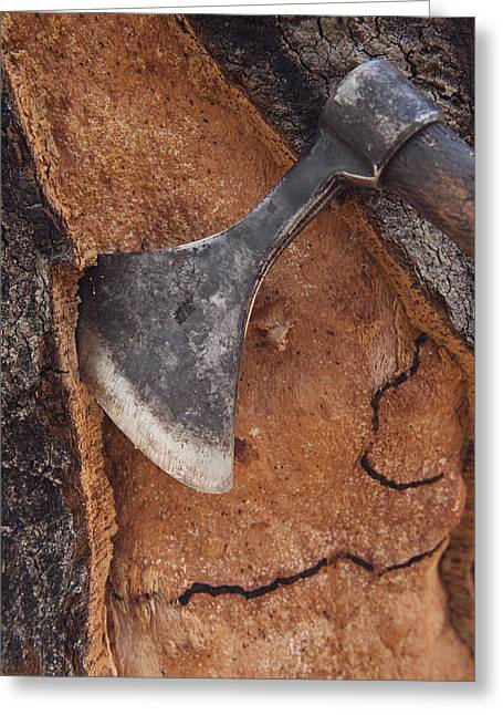 Extremadura Greeting Cards - Cork Oak Quercus Suber Bark Greeting Card by Pete Oxford