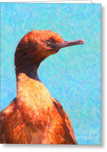 Water Fowl Greeting Cards - Cormorant . 7D1043 Greeting Card by Wingsdomain Art and Photography