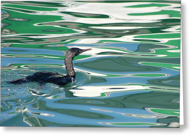 Famous Fish Abstract Greeting Cards - Cormorant in Green Greeting Card by Andrew  Hewett