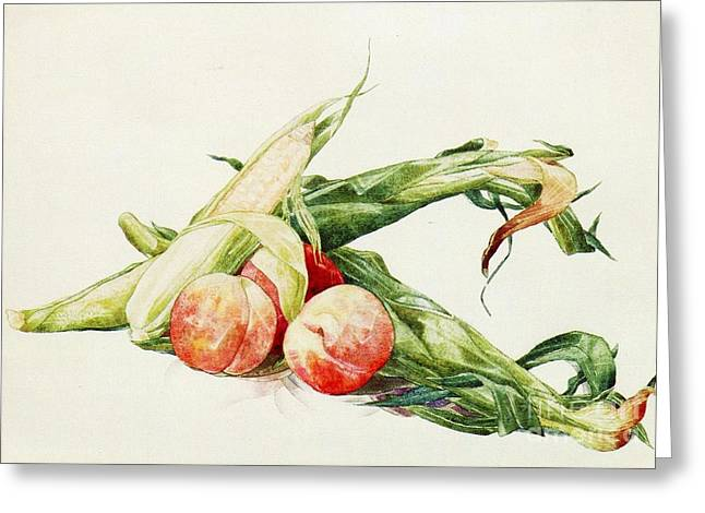 Demuth Greeting Cards - Corn and Peaches Greeting Card by Pg Reproductions