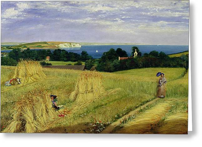 Corn Paintings Greeting Cards - Corn Field in the Isle of Wight Greeting Card by Richard Burchett