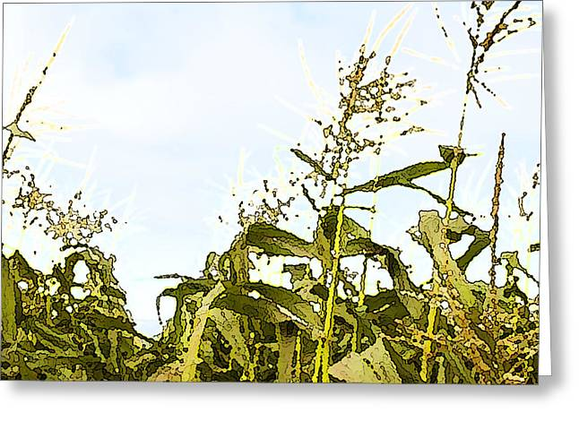 Corn in Summer Greeting Card by Artist and Photographer Laura Wrede