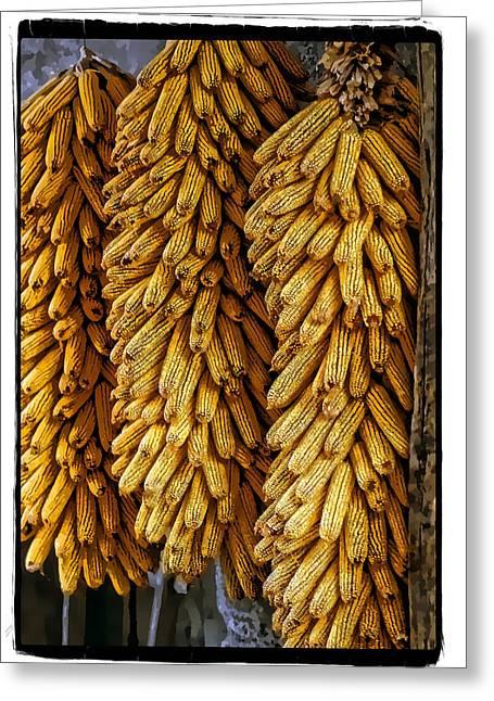 Corn Pyrography Greeting Cards - Corn  Greeting Card by Mauro Celotti