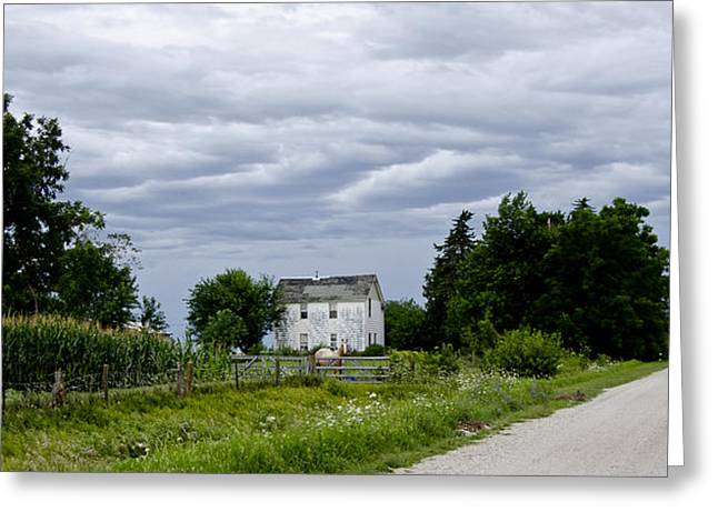 Old Country Roads Greeting Cards - Corn Storm Clouds Horse Dirt Road Old House Greeting Card by Wilma  Birdwell