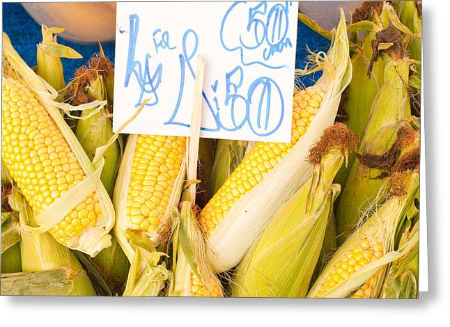Husks Greeting Cards - Corn Greeting Card by Tom Gowanlock