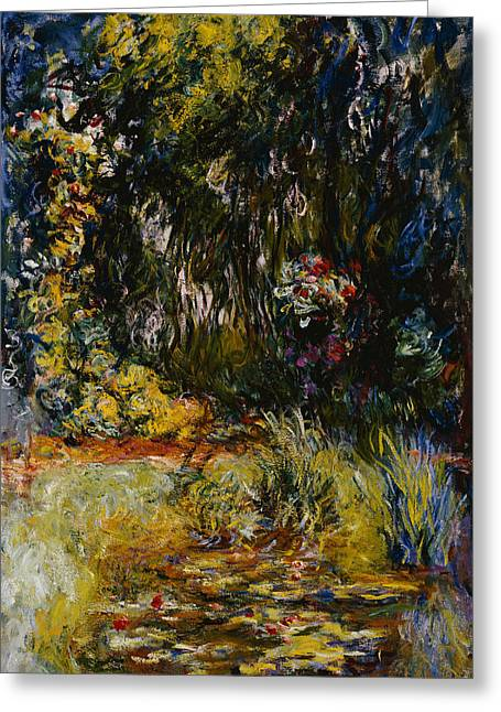 Pond Life Greeting Cards - Corner of a Pond with Waterlilies Greeting Card by Claude Monet