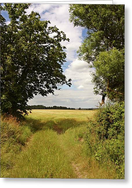 Field. Cloud Greeting Cards - Cornfield Greeting Card by Mike Bambridge