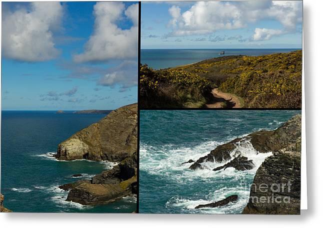 Sea Birds Greeting Cards - Cornwall North Coast Greeting Card by Brian Roscorla