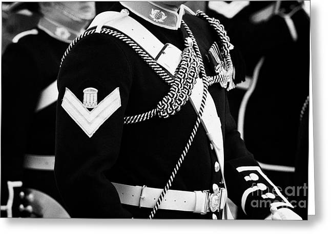 corporal and bugler of the band of HM Royal Marines Scotland at Armed Forces Day 2010 Greeting Card by Joe Fox