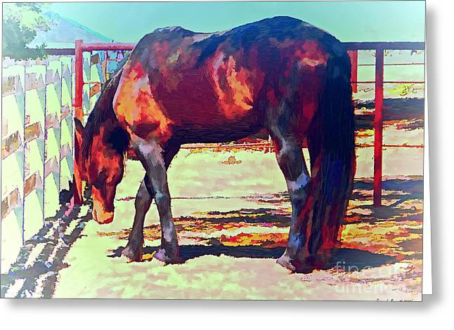 Temperature Mixed Media Greeting Cards - Corraled Horse Greeting Card by Jerry L Barrett