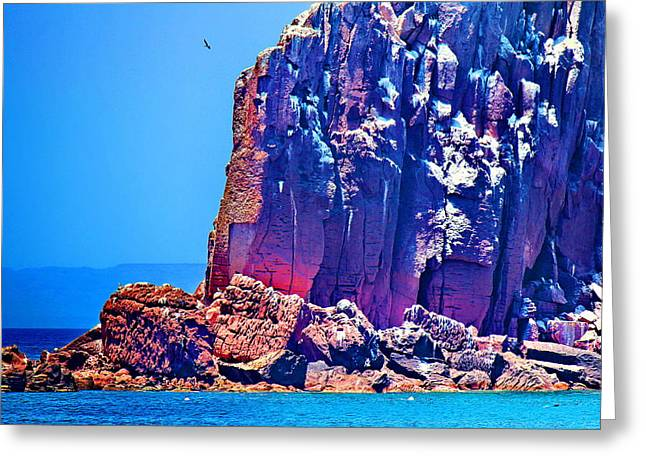 Sea Of Cortez Greeting Cards - Cortez Lava Greeting Card by Russ Harris