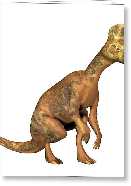 Corythosaurus Dinosaur Greeting Card by Friedrich Saurer