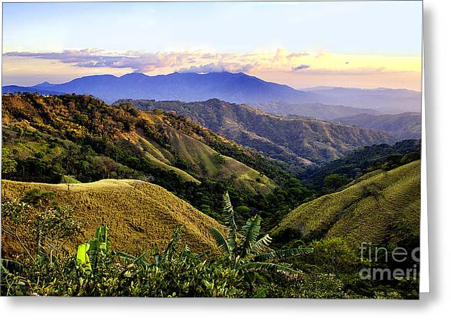 Costa Greeting Cards - Costa Rica Rolling Hills 1 Greeting Card by Madeline Ellis