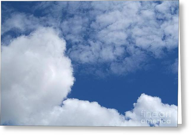 Insects Greeting Cards - Cotton Clouds Greeting Card by John From CNY