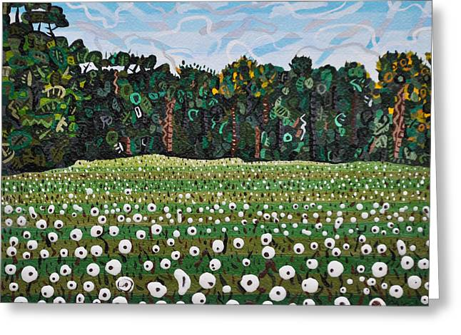 """cotton Field"" Greeting Cards - Cotton Field off Highway 64 Greeting Card by Micah Mullen"