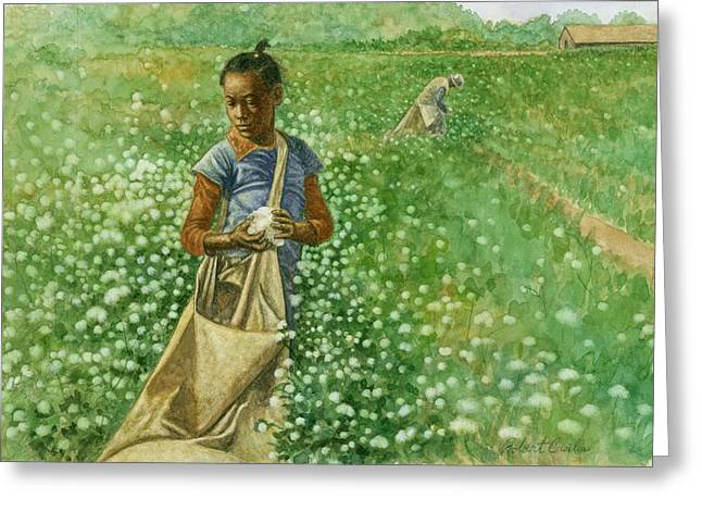 Sharecropper Greeting Cards - Cotton field Greeting Card by Robert Casilla