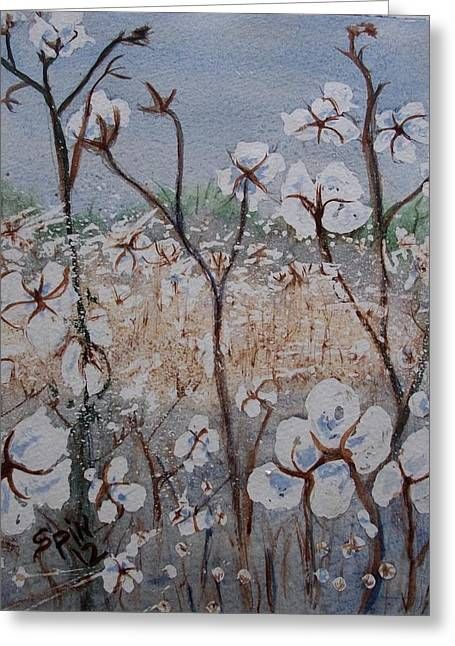Cotton Patch Greeting Card by Spencer  Joyner