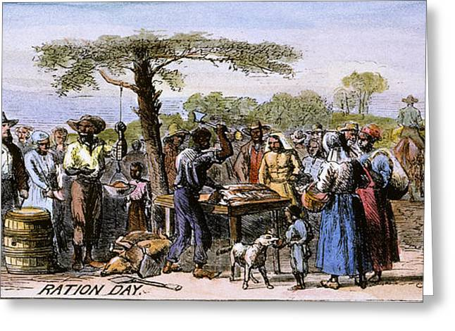 Sharecropper Greeting Cards - Cotton Plantation, 1867 Greeting Card by Granger
