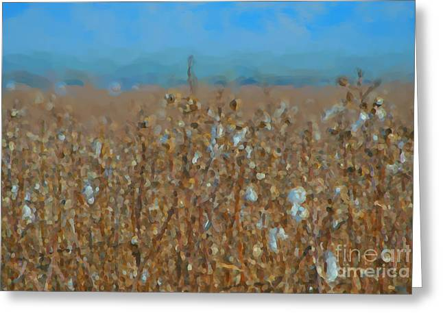 Textile Photographs Greeting Cards - Cottonfield Greeting Card by Donna Van Vlack
